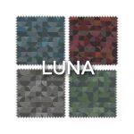 LUNA_21